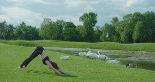 Ładna kobieta robi pilates na łące podczas słonecznego dnia zbiory wideo