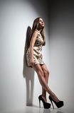 Ładna młoda dama w sukni nad popielatym tłem Obraz Stock