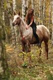 Ładna młoda dziewczyna jedzie konia bez jakaś wyposażenia w jesieni Zdjęcia Stock