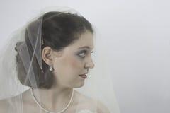 Ładna młoda panna młoda jest ubranym przesłonę Zdjęcie Stock