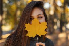 Ładna młoda szczęśliwa dziewczyna z uśmiechem zakrywa jej twarz z złotym żółtym jesień liściem na naturze zdjęcie royalty free