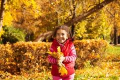 Ładna mała dziewczynka z wiązką żółci liście Zdjęcie Stock