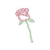 Ładna róża, nakreślenie styl, doodle, wektorowa ilustracja Obraz Royalty Free
