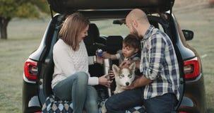 Ładna rodzina od cztery członków mama taty małej chłopiec i śliczny husky pies pięknego czas wpólnie po środku zbiory wideo