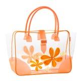 ładna torebki przezroczystość Zdjęcie Royalty Free
