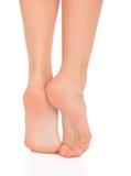 Ładne kobiet nogi zdjęcia stock