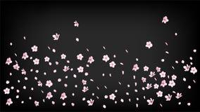 Ładnego Sakura okwitnięcia Odosobniony wektor Wiosna Spada 3d walentynka płatki, matka dnia lata Sakura Ładny okwitnięcie Odizolo royalty ilustracja