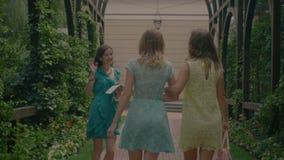 Ładni żeńscy najlepsi przyjaciele spotyka w lato parku zbiory