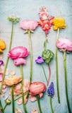 Ładni kwiaty na podławym modnym tle Obrazy Royalty Free