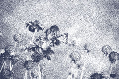 Ładni kwiaty z motylem w czarny i biały szczotkarskiej formie sztuki Obraz Stock