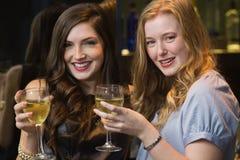 Ładni przyjaciele pije wino wpólnie Zdjęcia Royalty Free