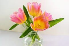 Ładni Różowi tulipany z cieniami kolor żółty obraz stock