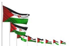 Ładni wiele western Sahara zaznaczają umieszczającą przekątnę odizolowywającą na bielu z miejscem dla twój teksta - jakaś okazji  royalty ilustracja