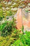 ładny chałupa ogródu szczegół Zdjęcia Royalty Free