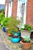 ładny chałupa ogródu szczegół Obrazy Stock