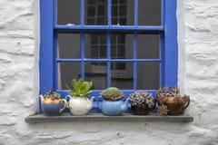 Ładny chałupy okno z teapots i roślinami Zdjęcia Stock