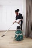 Ładny dom zrobił cleaning pokojowi Zdjęcia Royalty Free