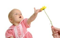 Ładny dziecko zdjęcie stock