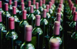 Ładny kilka rzędy wino butelki zdjęcie stock