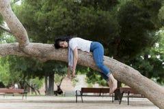 Ładny kobiety dosypianie w drzewie po być nad pracujący i mieć kłopotu dosypianie Zdjęcia Royalty Free