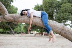 Ładny kobiety dosypianie w drzewie po być nad pracujący i mieć kłopotu dosypianie Zdjęcie Royalty Free