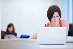 Ładny młody studenta collegu studiowanie w bibliotece Fotografia Stock