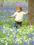 Ładny niemowlak W kwiatach zdjęcia royalty free
