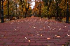Ładny park Fotografia Stock
