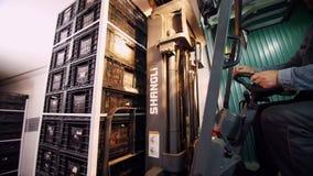 Ładować ciężarówka pracownik na małym ładowaczu, Elektryczna forklift ciężarówka importuje w ampułę, ładunków pudełka jabłka zbiory wideo