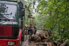 Ładowniczy drewniany notuje dalej halną drogę 01 Zdjęcia Royalty Free