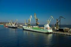 Ładunków żurawie transship masę w doku Przemysłowy port morski fotografia royalty free