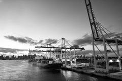 Ładunków żurawie w porcie morskim na wieczór niebie i statek Morski zbiornika port, terminal lub Wysyłki merchandise i zafrachtow obrazy royalty free