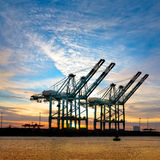 Ładunku port morski. Ładunków denni żurawie. Morze. Zdjęcie Royalty Free