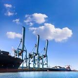Ładunku port morski. Denni ładunków żurawie. Zdjęcia Royalty Free