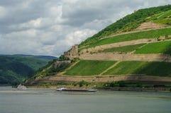 Ładunku statek, średniowieczny grodowy Ehrenfels o i winnicy, (forteczny) Obraz Royalty Free