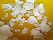 Łamane Shell cząsteczki jajko Obraz Royalty Free