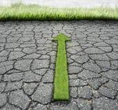 Łamany asfalt I trawa Zdjęcie Royalty Free