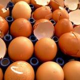 łamany jajko w pakunku Zdjęcia Stock