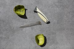 Łamany nóż i skorupa avocado fotografia stock