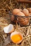 Łamany otwarty świeży rolny jajko Obrazy Stock