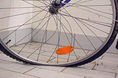 Łamany rowerowy koło zginający, przekręcać szprychy i mieszkanie męczący obrazy stock