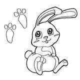 Łapa druk z królikami Barwi strony wektorowe ilustracji