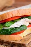 Łatwa kurczak kanapka dla lunchu lub gościa restauracji Kurczak kanapka z świeżymi czerwonymi pomidorami i szpinakiem opuszcza na Obrazy Royalty Free
