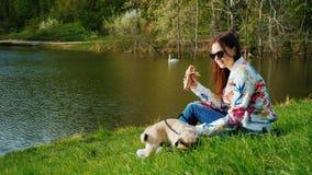 Łatwa przekąska w malowniczym parku z jeziorem Kobieta siedzi na trawie, hot dog je, obok ona jest a zbiory wideo