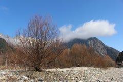 łatwo usuwa wektoru well Japan ablegrująca góra zdjęcie stock