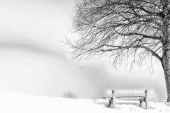 Ławka, mgłowy zima dzień Obrazy Royalty Free