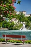 Ławka na brzeg Rhine spadki zdjęcia royalty free