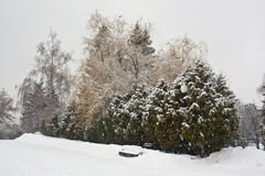 Ławka pod śniegiem Zdjęcie Royalty Free