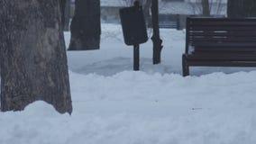 Ławka pod śniegiem w zimnej zimy chmurnym dniu zbiory wideo