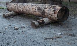 Ławka robić drewniane bele Zdjęcie Royalty Free